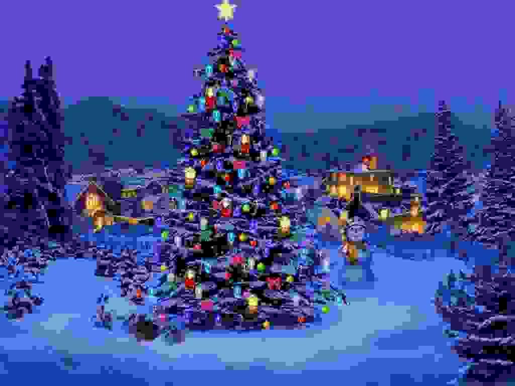 Christmas Tree Nature1