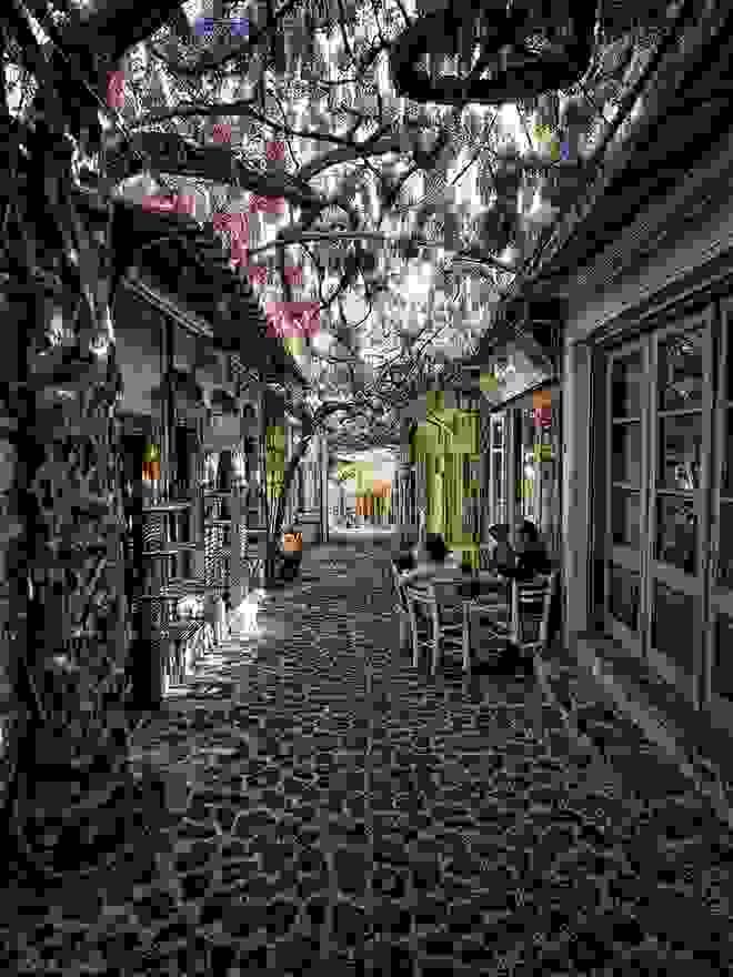 Ο πιο όμορφος δρόμος του κόσμου βρίσκεται στη Μυτιλήνη (φωτο)