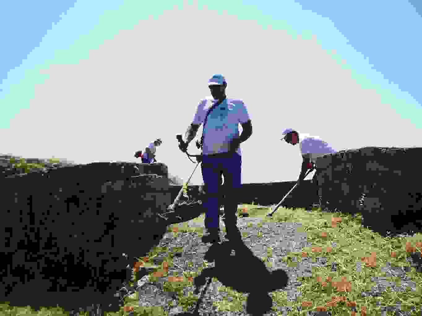 «ΚΡΑΝΗ»: Κόψαμε τα χόρτα στο Κάστρο του Αγίου Γεωργίου,  με πρωτοβουλία του GreenKey.