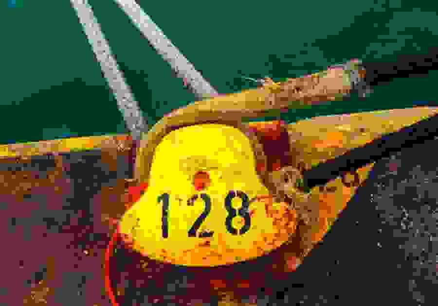 Απεργία ΠΝΟ: «Δεμένα» τα πλοία Παρασκευή και Σάββατο