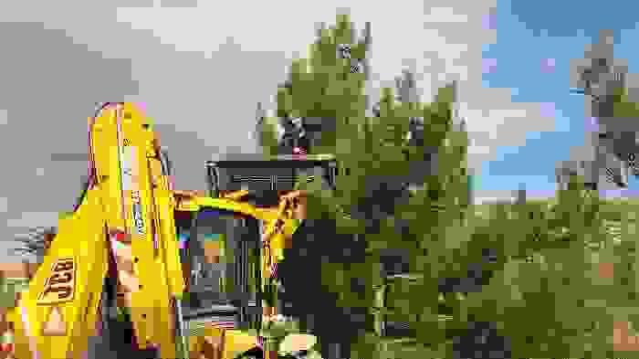 """Επιχείρηση """"διάσωση πεύκων"""" από το Δήμο Κεφαλονιάς έλαβε χώρα σήμερα το πρωΐ στην Παλική."""