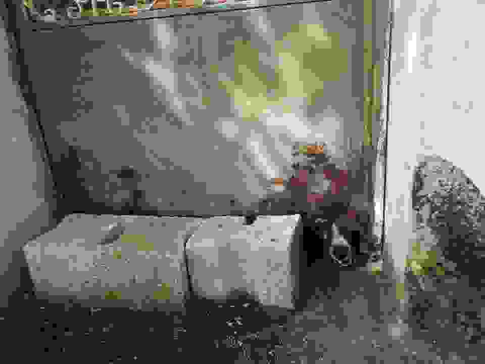 ΑΙΣΧΟΣ: ΚΡΑΤΟΥΣΕ ΦΥΛΑΚΙΣΜΕΝΗ ΣΚΥΛΙΤΣΑ 6 ΧΡΟΝΙΑ ΣΤΗΝ ΠΥΛΑΡΟ
