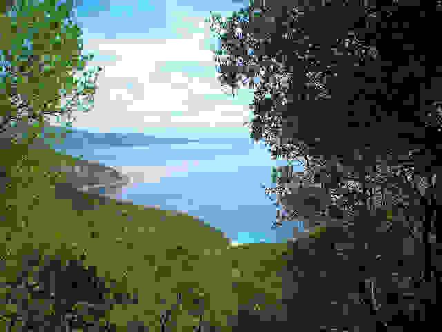 «Βόμβα» για τους ιδιοκτήτες γης στην Κεφαλονιά οι δασικοί χάρτες