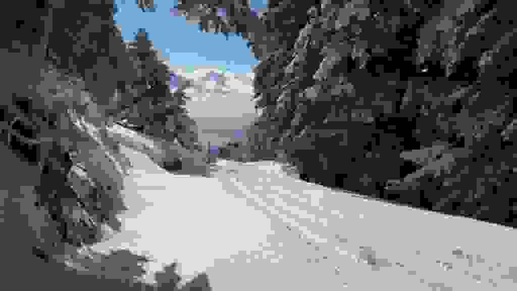 Χιόνισε στον Αίνο (εικόνες)