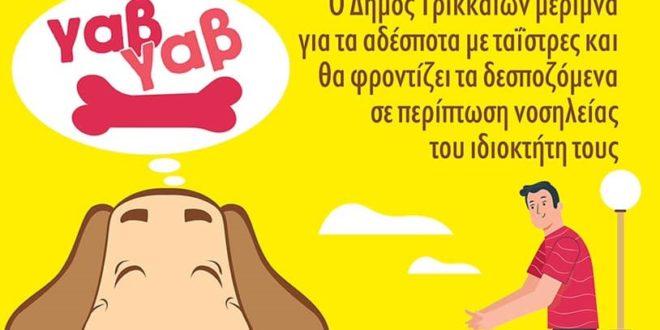 Σε προβληματισμό οι ζωόφιλοι της Κεφαλονιάς: Ενώ άλλοι Δήμοι της Ελλάδας λαμβάνουν έκτακτα μέτρα προστασίας των ζώων, στο νησί μας οι Δήμοι αδιαφορούν!