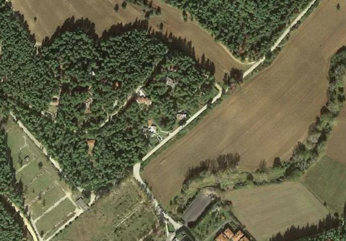Τα Δάση της Επτανήσου και το ΕλληνικόΔημόσιο. Μελέτη για την κυριότητα τωνΔασών