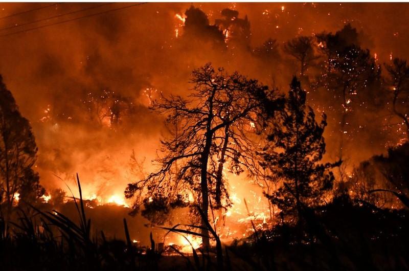 ΚΚΕ για τις καταστροφικές πυρκαγιές που στη Δημοτική Ενότητα Ελειού – Πρόννων