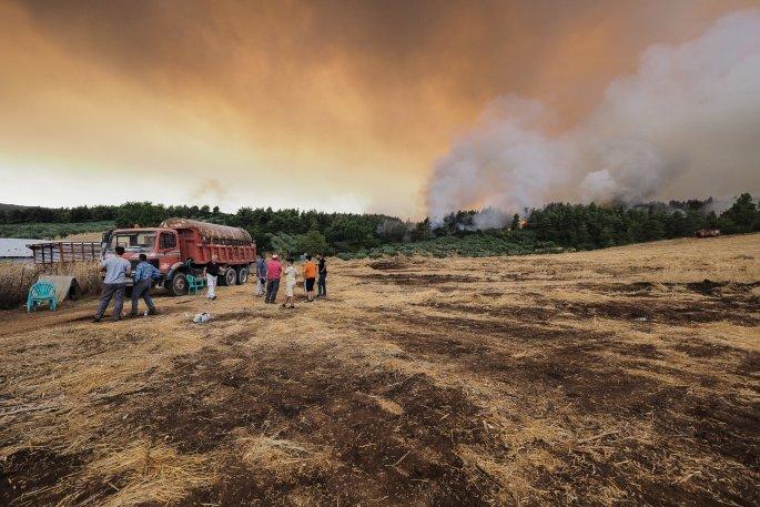 Φωτιά Εύβοια: Ανεξέλεγκτα τα μέτωπα – Στην παραλία μετακινούνται οι κάτοικοι – Συγκλονιστικές εικόνες