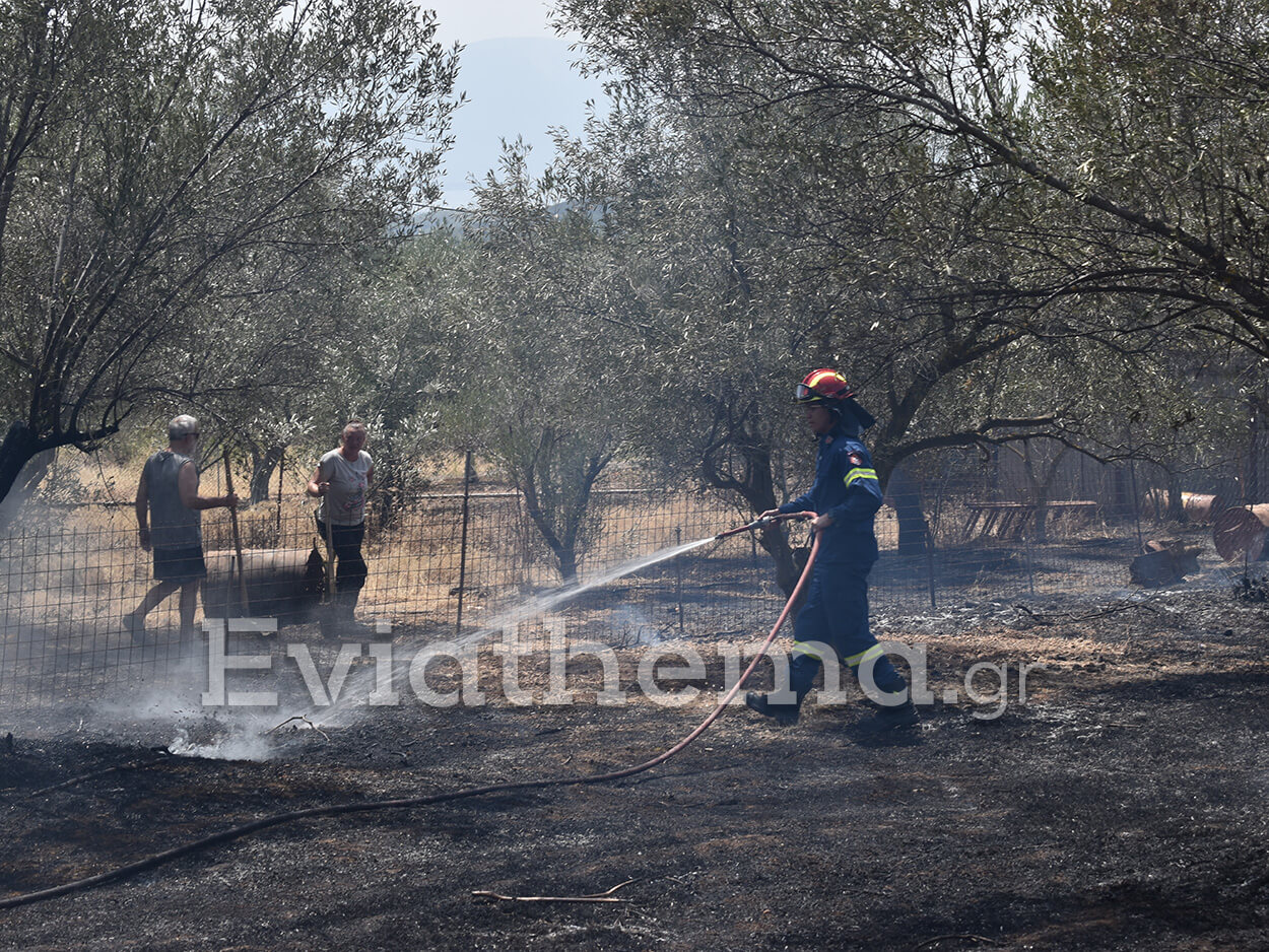 Φωτιά στην Εύβοια: Κάηκαν πάνω από 150 σπίτια και 20