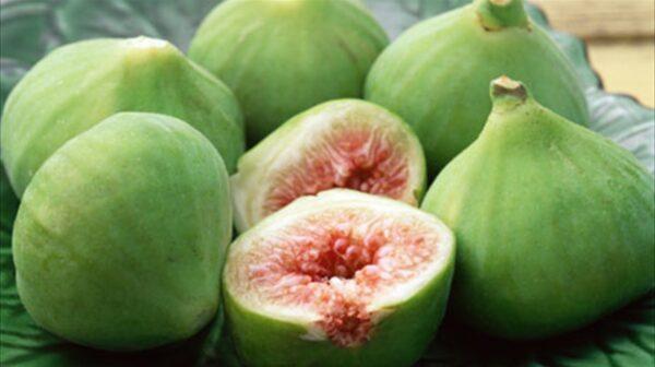 Σύκο: Το φρούτο του Αυγούστου με τα θαυματουργά οφέλη για την υγεία