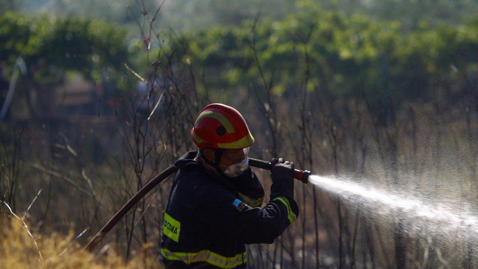 Άμεση επέμβαση σε εστία φωτιάς στο χωριό Φάρσα