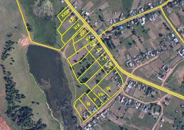 Δασικοί Χάρτες: πράσινο φώς ΣτΕ για ιδιοκτησιακό και τακτοποίηση αυθαιρέτων